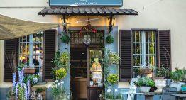 Ristorante greco a Como – Nuova stagione, nuovo menu!